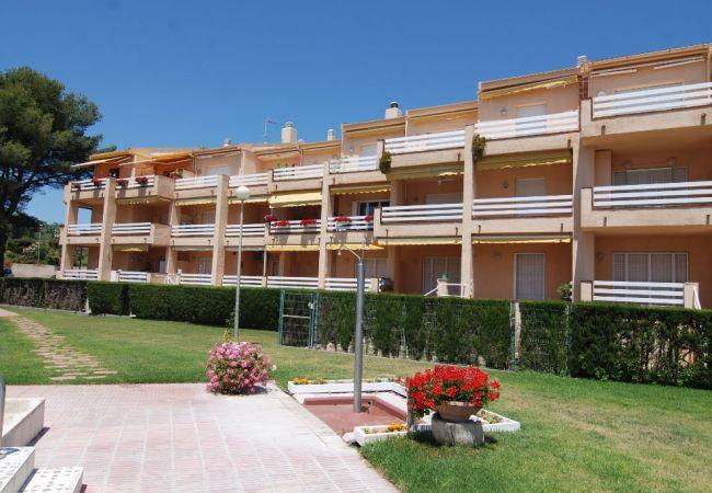 Apartment in Mont-Roig del Camp - Guardamar 51/210