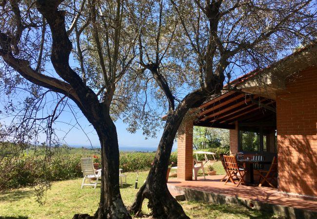 House in Guardistallo - Casetta Gaia giardino recintato con vista mare
