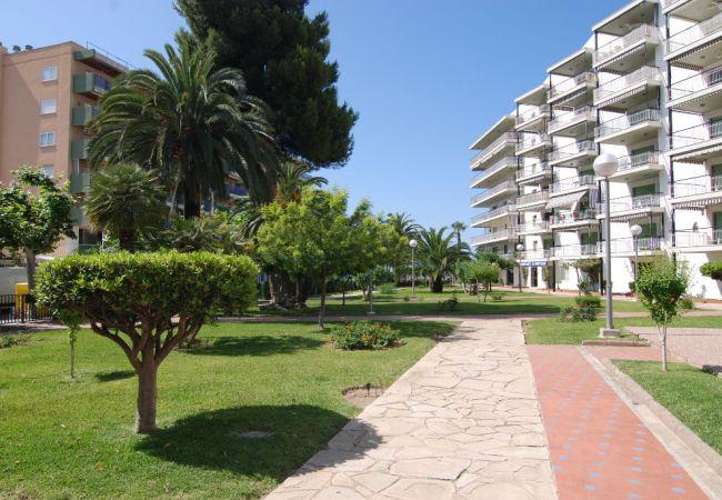 Стоимость недвижимости в салоу испания