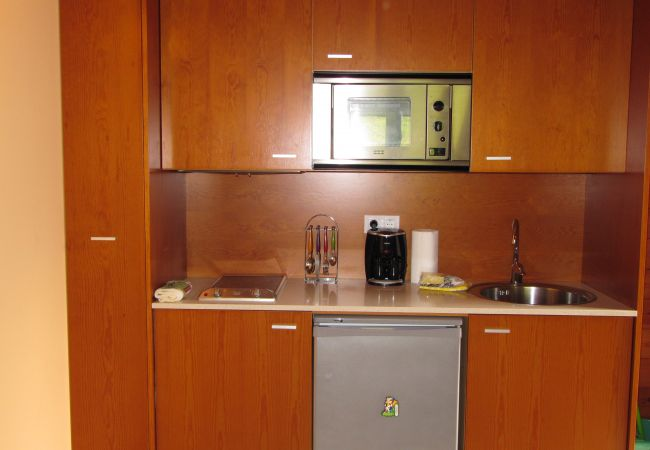 Apartment in Incles - Pleta Peu del Riu 2.6, Incles