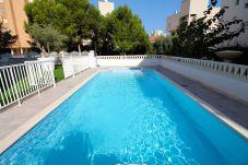 Apartment in El Campello - APARTAMENTO SOL Y LUZ 2