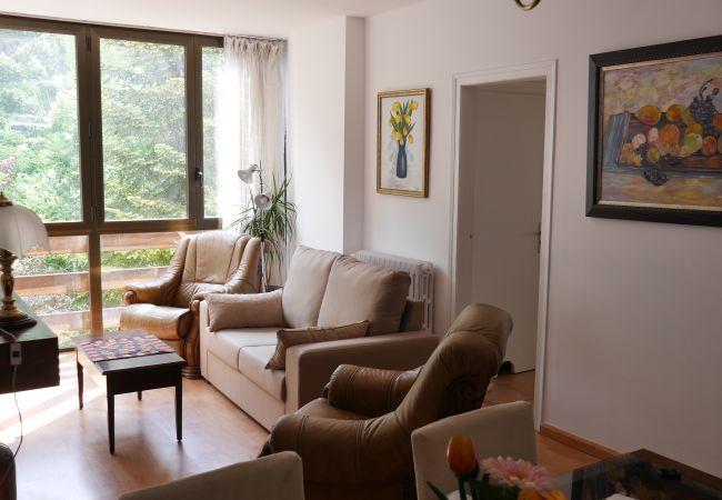 Apartment in La Massana ciudad - Vitivola La Solana 4-2