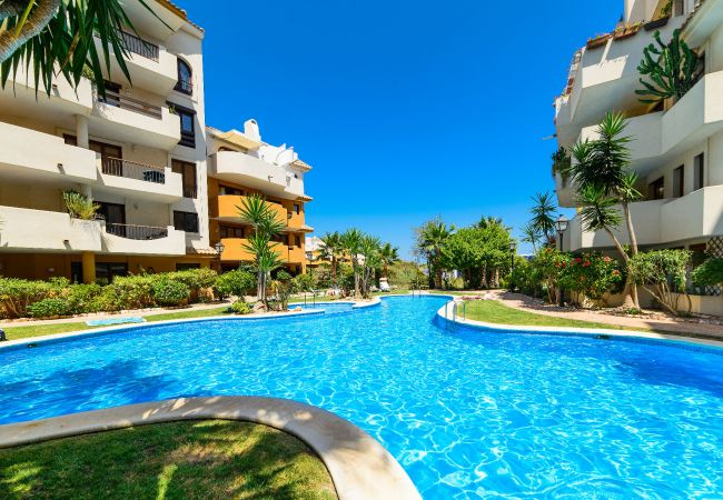 Appartement à Torrevieja - Arina