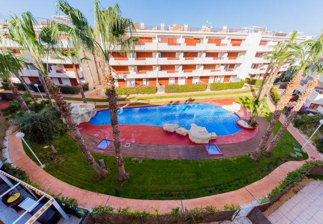 Appartement à Torrevieja - ID43