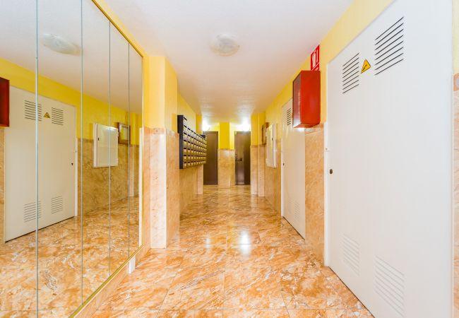 Studio à Torrevieja - ID74