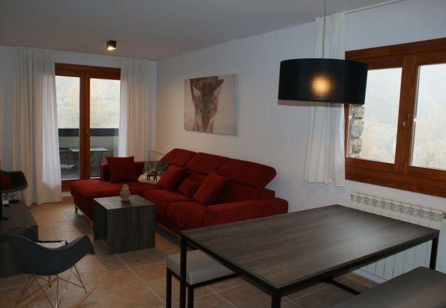Appartement à Ransol - Vitivola Segle XX 4-1